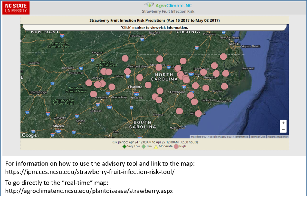 Strawberry Fruit Risk Advisory map