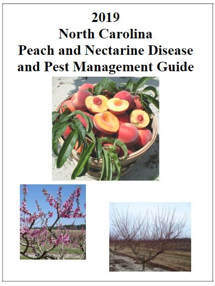 2019 North Carolina Peach and Nectarine Disease and Pest Management cover image