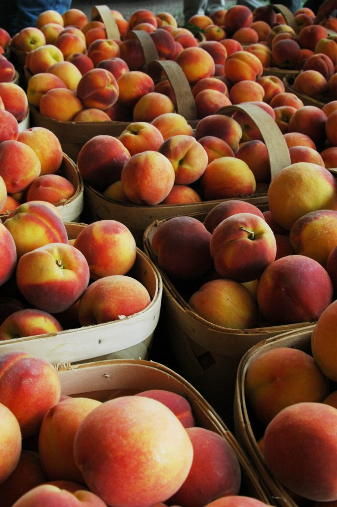 Locally Grown NC Peaches at Farmers Market