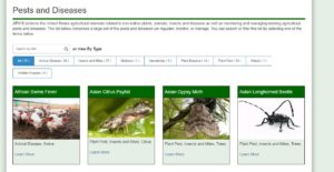 APHIS Pest Disease Database
