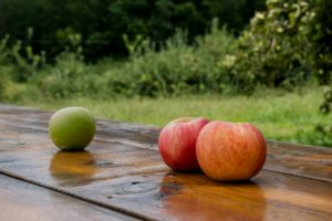 Apples on a table in an orchard